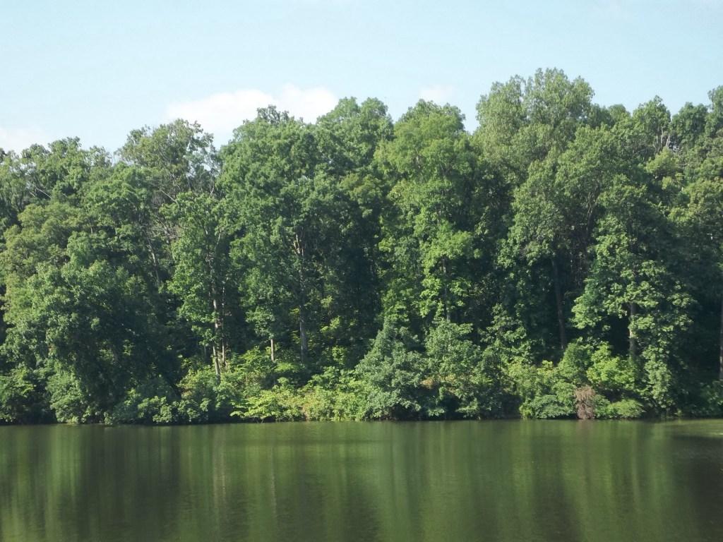 Oak Valley Fishing Lake